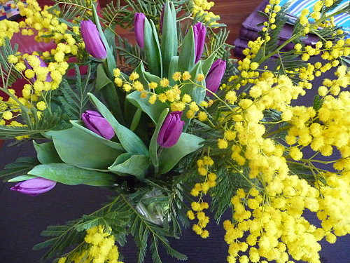Букеты цветов мимоза 116